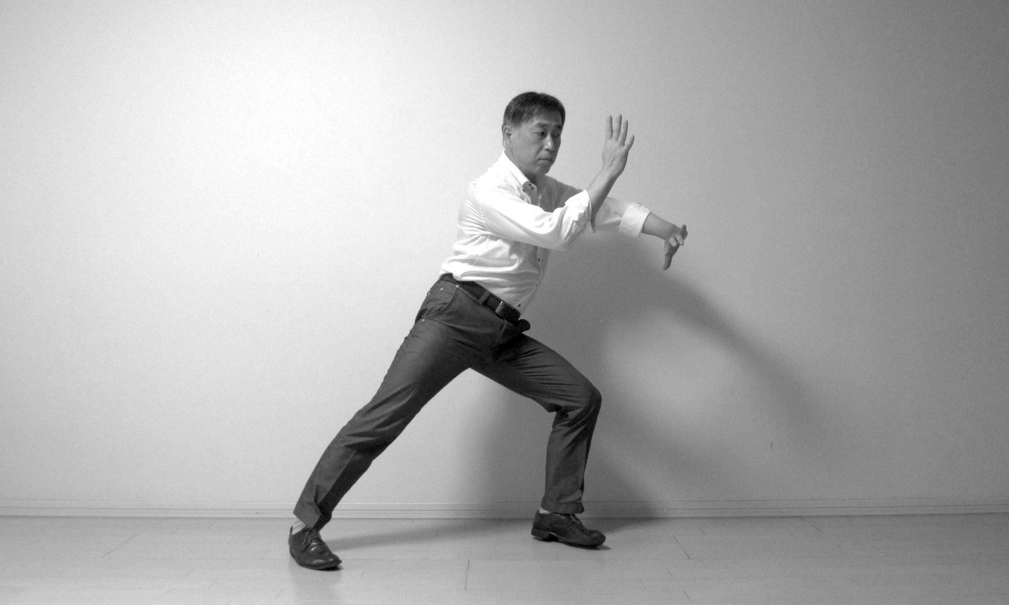 太極拳 搂膝拗步 Taijiquan